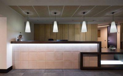 Офис от дизайнера Виктории Витковской с Edge Lamp от П.Ветрова